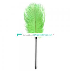Funny Ostrich Feather Animal Toy Adult Love Game Toy Slapper Long Tickler