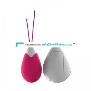 Hot and New Remote Control Vibrator Love USB Rechargeable